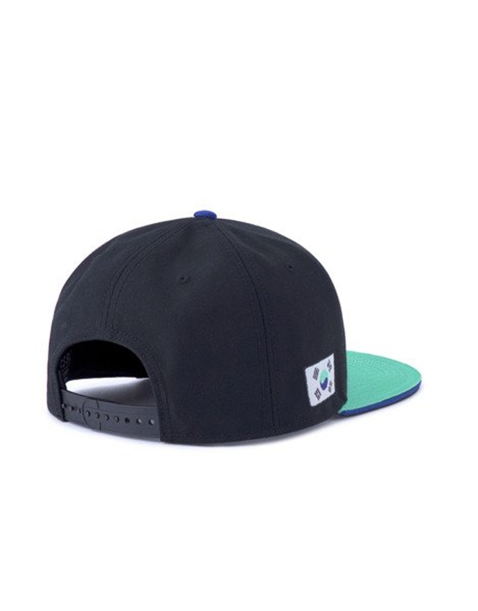 Czapka Cayler & Sons WCWW Cap black/pale mint